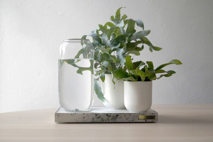 Embrace Your Inner Gardener with Tableau