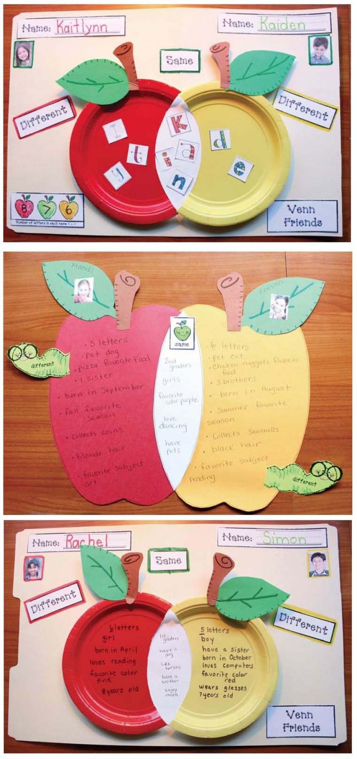 We love this autumn-inspired take on the Venn diagram! #readingcomprehension