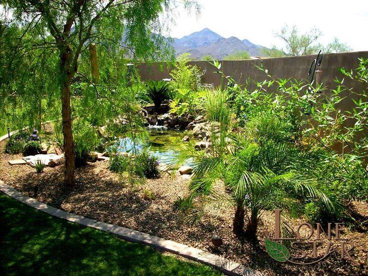 This dense landscape surround a koi pond for a tropical for Koi pool water gardens thornton