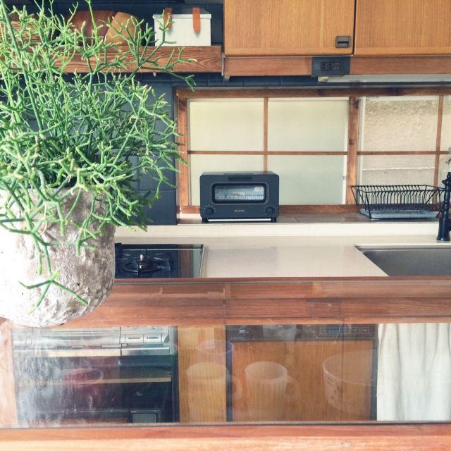 Megumiさんの、家電,BALMUDA,トースター,リプサリス,キッチン,のお部屋写真