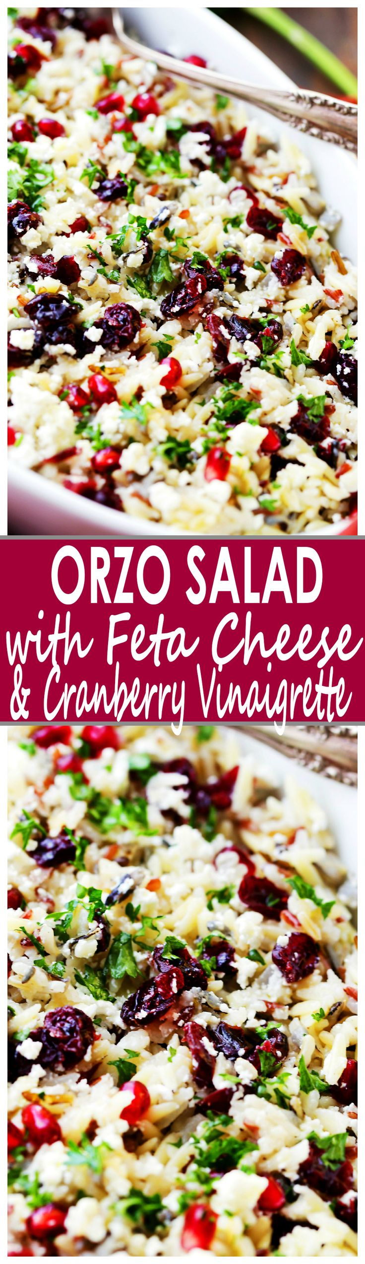 Orzo Pasta Salad with Feta Cheese and Cranberry Pomegranate Vinaigrette Recipe - This cheesy orzo pasta salad is full of bright and colorful winter flavors tossed with a delicious dose of Cranberry Pomegranate Vinaigrette. It's also the perfect side dish to share at your next Holiday gathering!