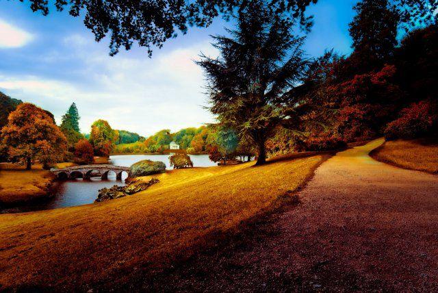 Осень (55 фото осени) | Осенние фото, Природа, Осень