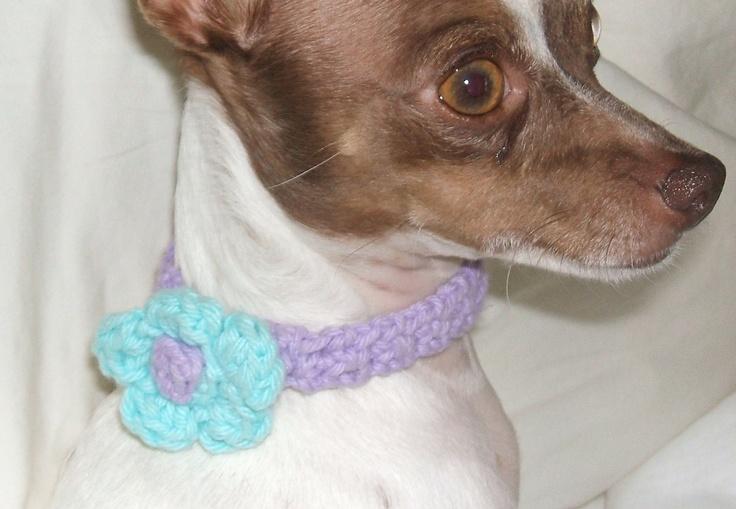 crochet cotton dog collar Crocheted Pet Stuff ...