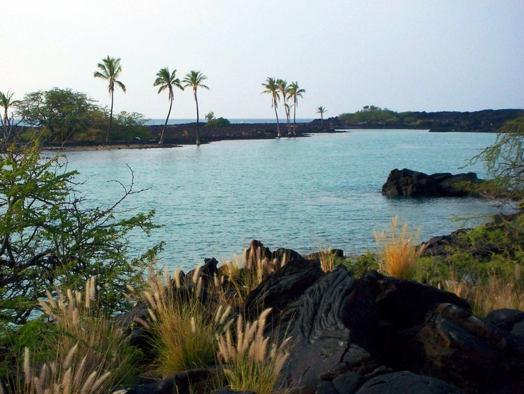 17 best images about everything hawaii on pinterest for Hawaii tides for fishing