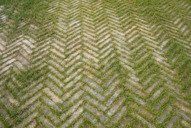 OMG - how nifty! Chevron pavers with grass sprouting up between! too cool! Wonder if this could be done with Moss as well?