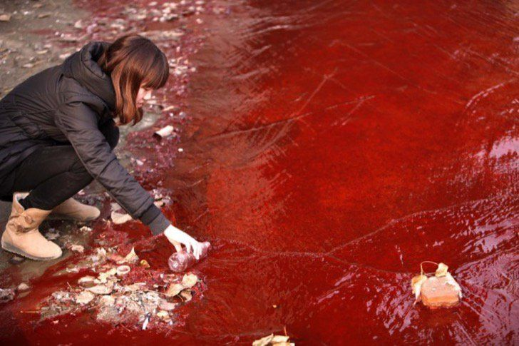 You Had No Idea It Was This Bad: 37 Haunting Photos Of Environmental Pollution - Page 15 of 35 - flipopular