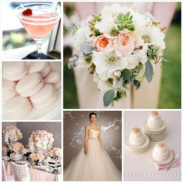 8 best wedding crackers images on pinterest biscuit crackers blush wedding color palette solutioingenieria Image collections