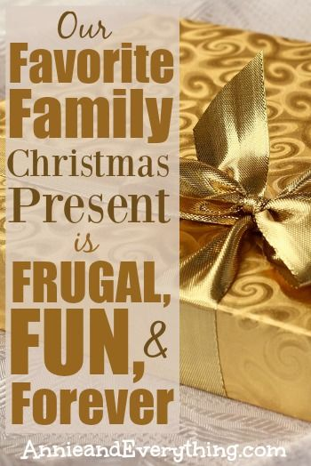 Looking for a fun, frugal, family Christmas present that EVERYONE can enjoy?  Read to see what my family does every year!