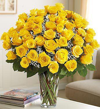 Ultimate Elegance Long Stem Yellow Roses