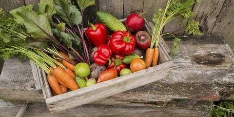 Jak skladovat vypěstovanou úrodu | Doktorka.cz