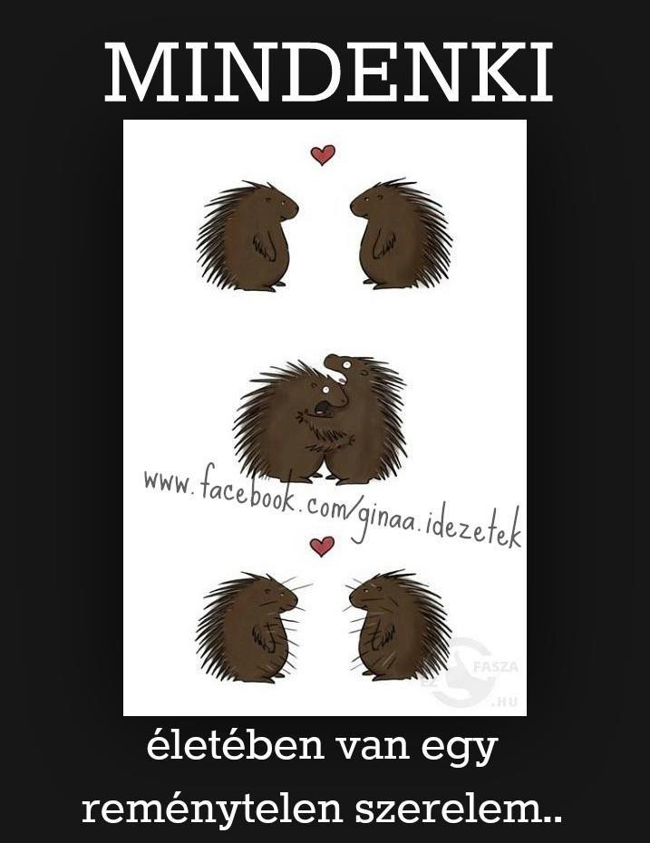 plátói szerelem :D