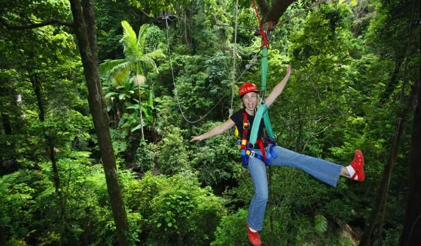 Jungle Surfing through ancient Rainforests in Cairns, Australia