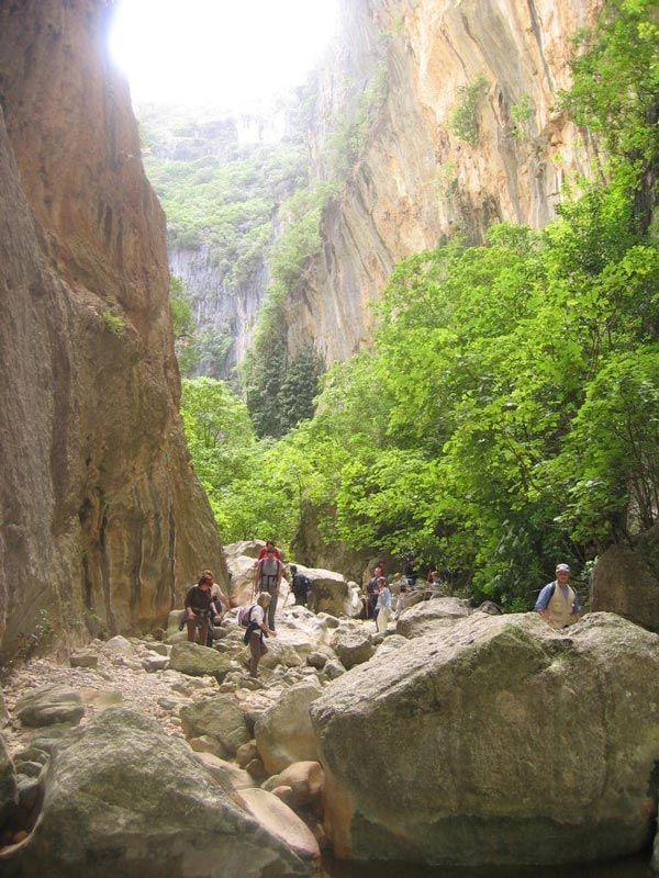 El Bosque-Parque Natural Sierra de Grazalema- Garganta Verde, en Zahara de la Sierra   Andalucia  Spain