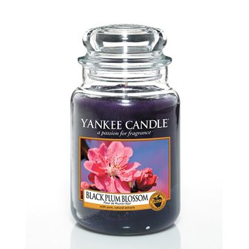 Black Plum Blossom - What's New - Yankee Candle - Summer 2014
