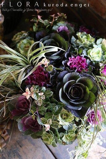 アンティークバケツに寄せ植えを。。。プリムラ・ハボタン・パンジーを使って の画像|フローラのガーデニング・園芸作業日記