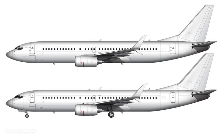 737-800 scimitar winglets