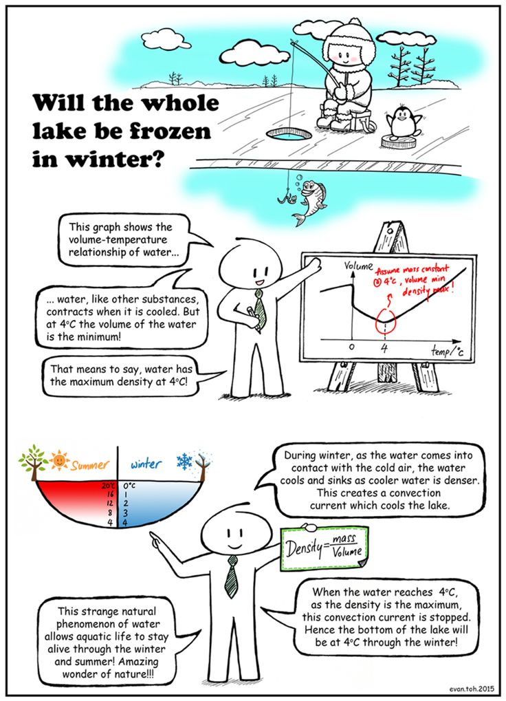 Will The Whole Lake Be Frozen During Winter At What Temperature