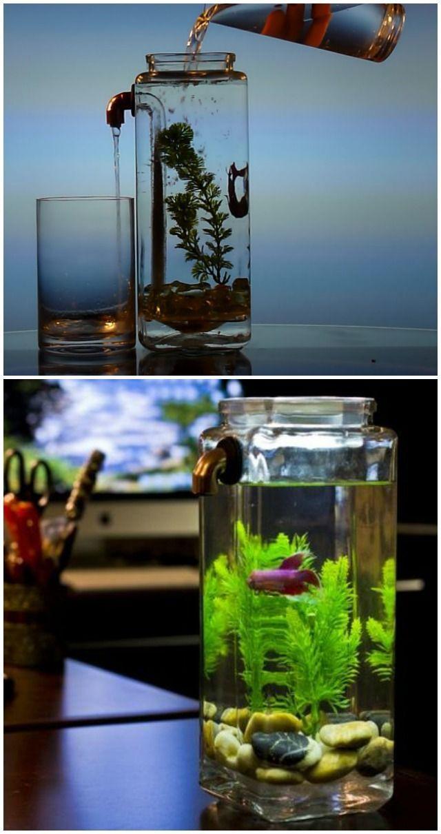 Noclean aquariums aquarium cleans itself in about 60 secs for Dirty fish tank