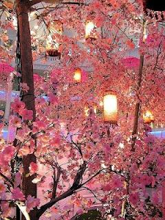 Just beautiful! Cherry Blossoms and Lanterns. razbeariez
