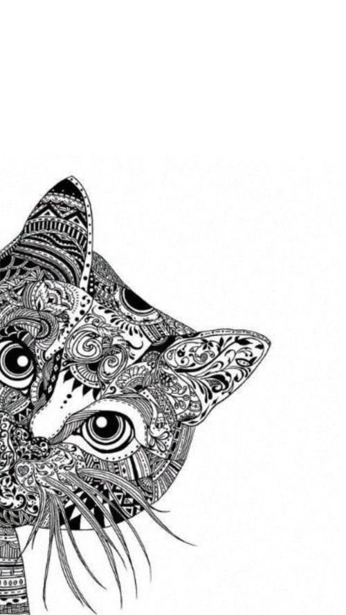 Imagem de cat, art, and drawing