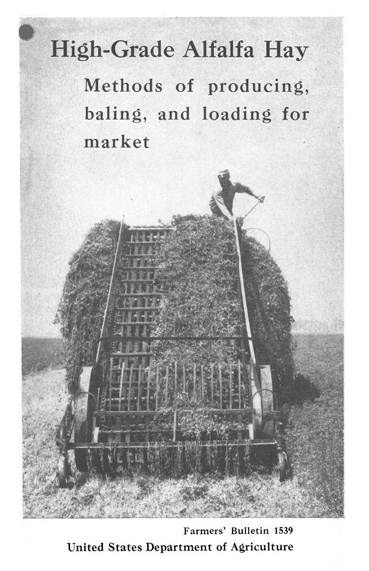 High-grade alfalfa hay : methods of producing, baling, and loading for market Front Cover