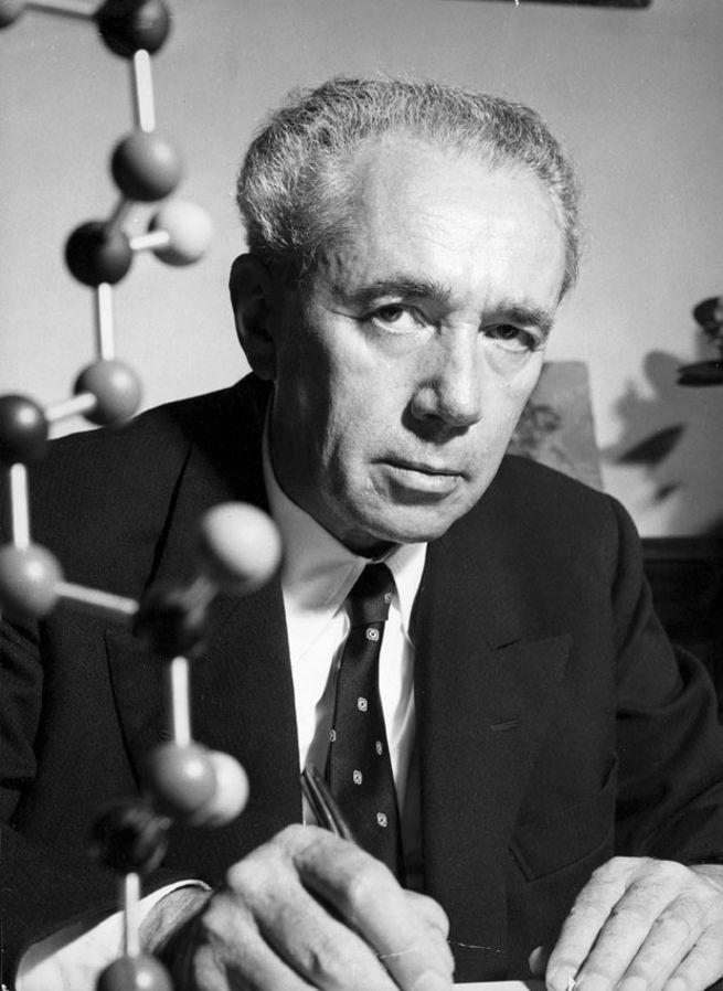 Giulio Natta, premio Nobel per la chimica (1963)