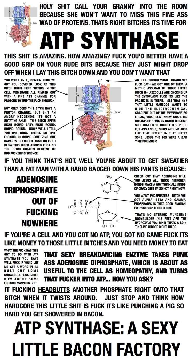 Fucking For Fun within 49 best i fucking love science images on pinterest | chemistry