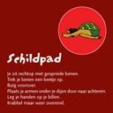 kinderyogakaart de schildpad