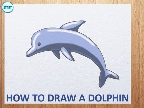 how to draw a dolphin by art for kids hub