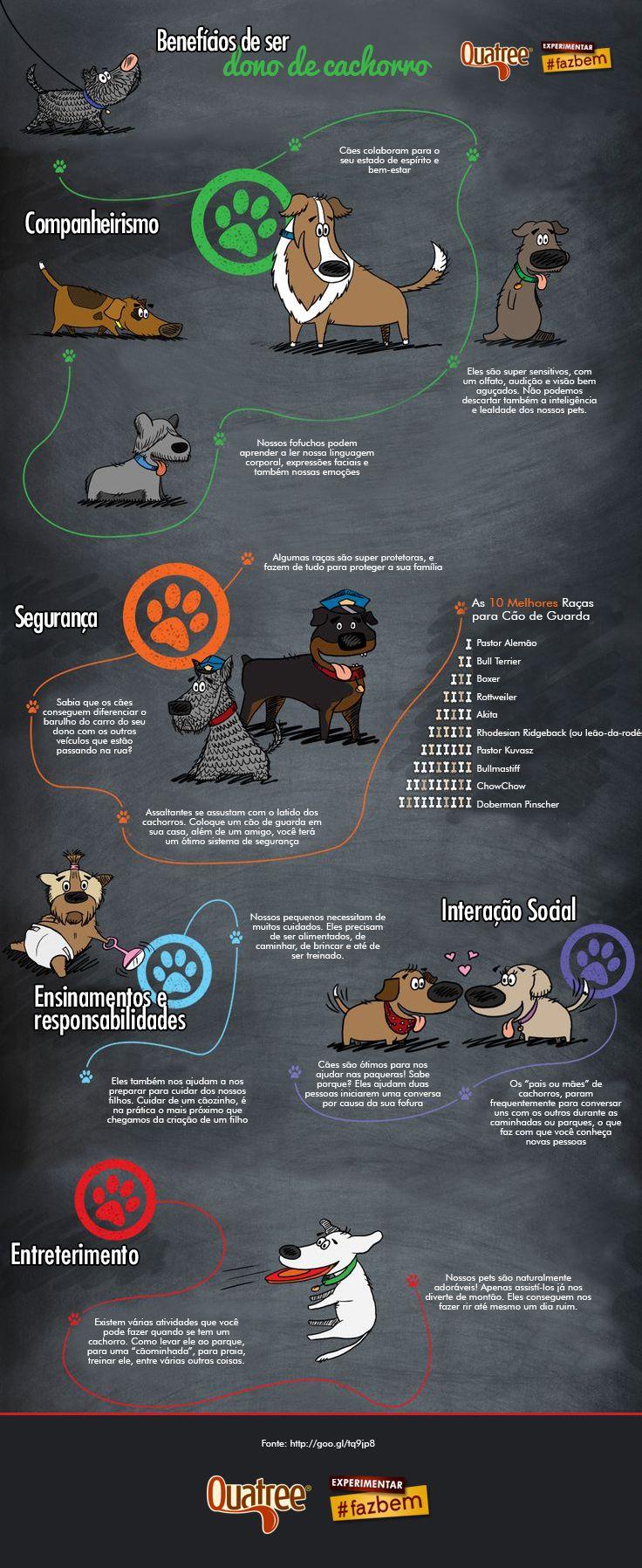 Você sabe quais são os benefícios de ser dono de cachorro? Na dúvida, confira o infográfico abaixo e saiba porque eles nos encantam tanto e se tornaram os nossos melhores amigos.