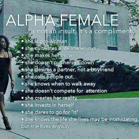Alpha male traits in dating