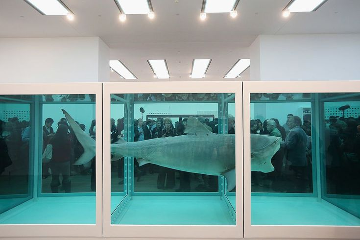 Damien Hirst, The Physical Impossibility of Death in the Mind of Someone Living (1991). Photo courtesy of Oli Scarff/Getty Images.