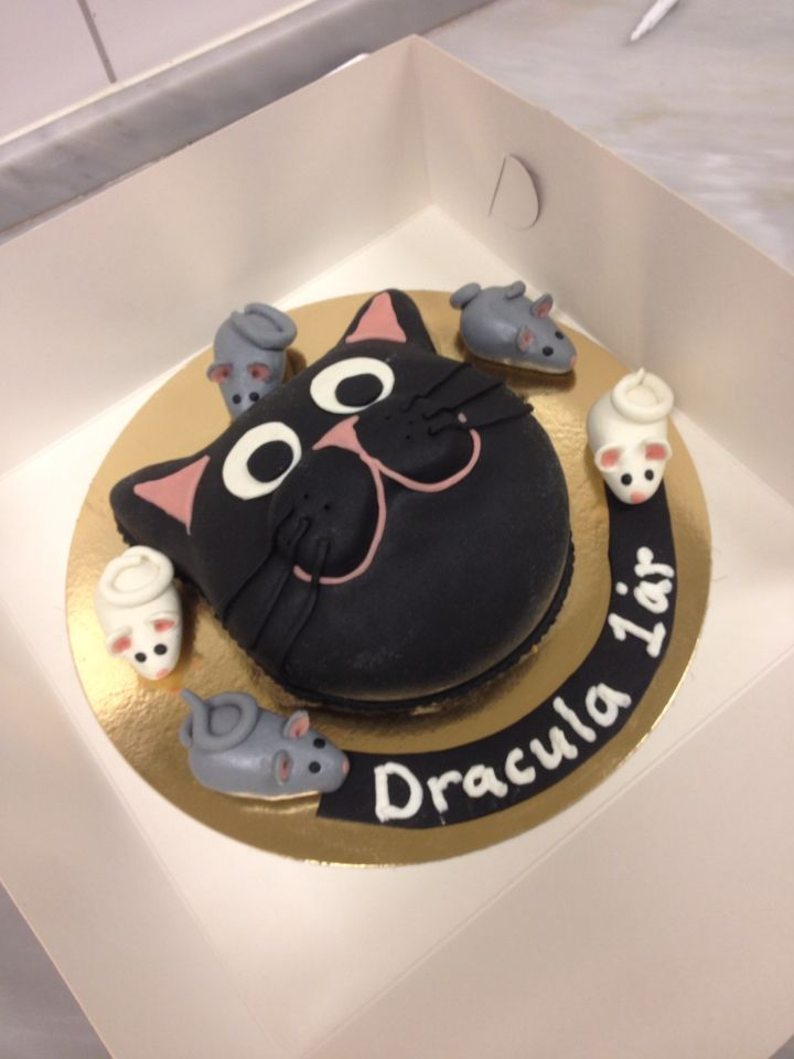 A swedish princess cake.  A cake I did for my cat Draculas 1 year birthday.  The cake is covered in marzipan and the mouses are done in marzipan.