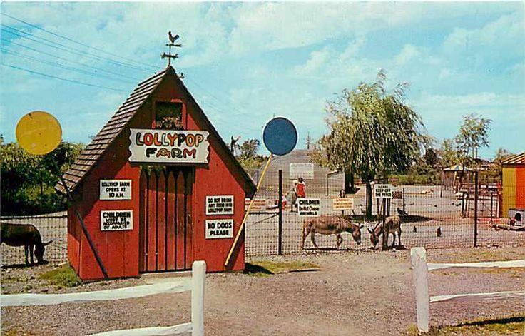 NY, Rochester, New York, Lollypop Farm Shelter, 1960s