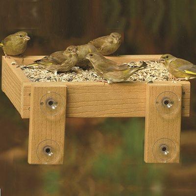 Woodlook Window Bird Feeder Tray