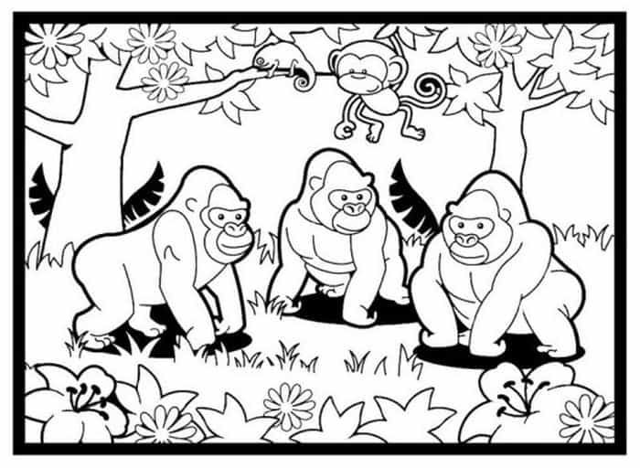 Gorilla Family Coloring Pages Family Coloring Pages Animal Coloring Pages Dolphin Coloring Pages