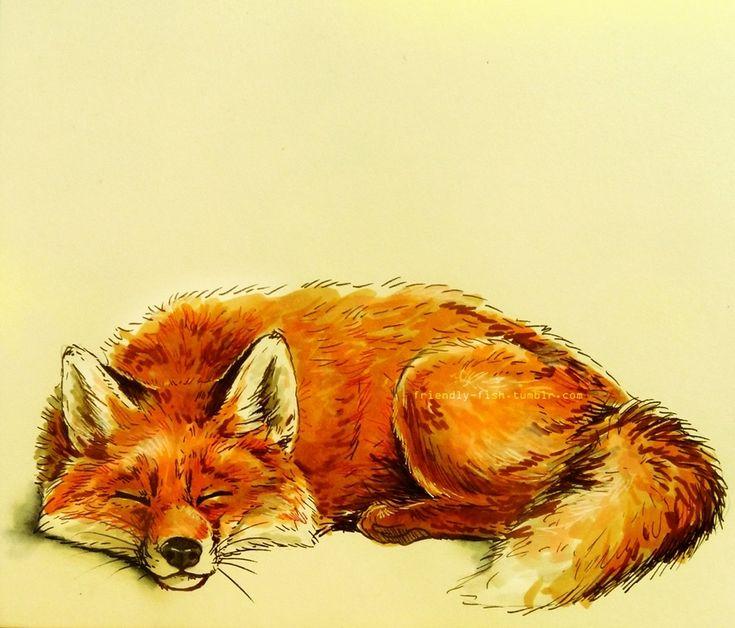 Fox by BooYeh.deviantart.com on @deviantART
