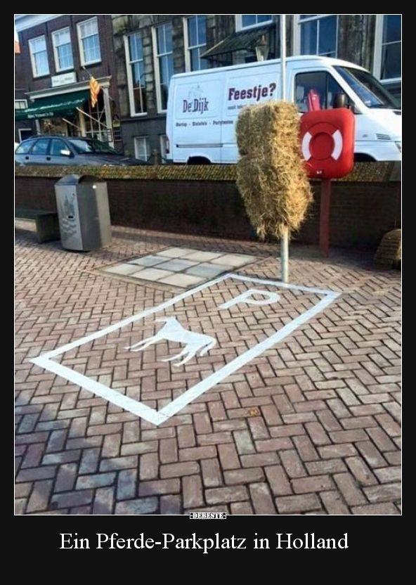 Ein Pferde-Parkplatz in Holland..