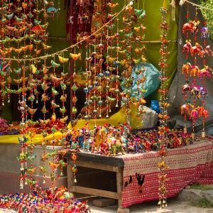 Best Souvenir Shopping in New Delhi | Travel + Leisure
