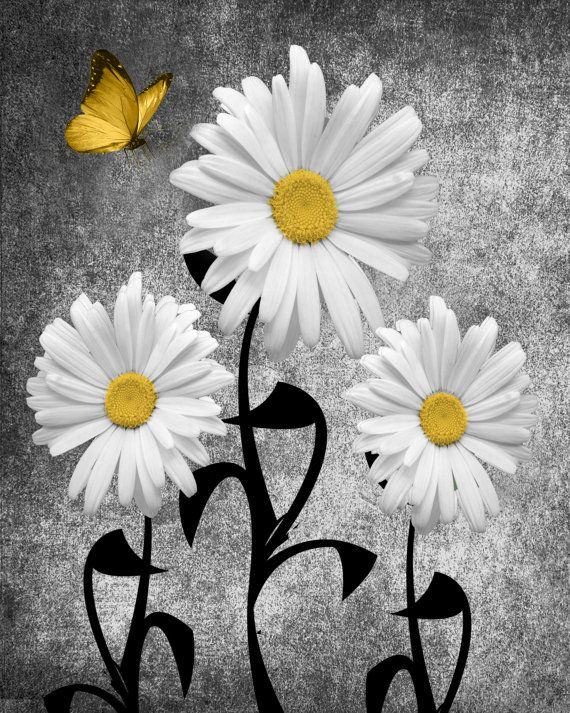 Yellow Gray Wall Pictures Daisy Flowers Butterflies