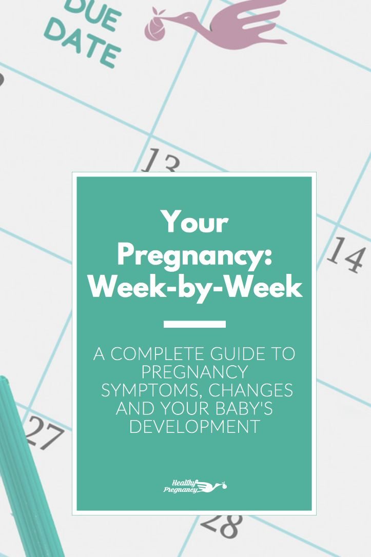A week by week calendar and complete guide to your symptoms, changes and your baby's development during your pregnancy. Know everything you can expect over the next nine months.