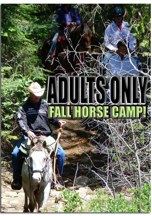 Ontario Children's Riding Camps Adult Horseback Camp