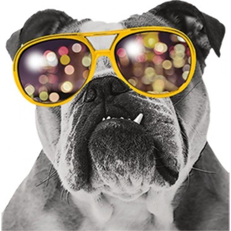 Pro Design Inc: 557 Best Heat Transfer Designs Images On Pinterest