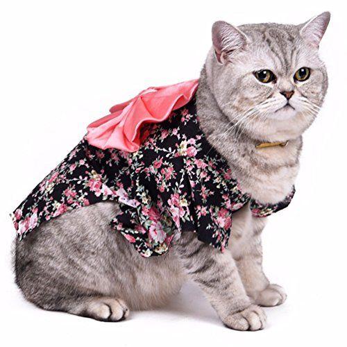 SMALLLEE_LUCKY_STORE Small Cat Dog Costume Kimono Floral ... https://www.amazon.com/dp/B01KCLZTJI/ref=cm_sw_r_pi_dp_x_0dCyyb9W82JJ7