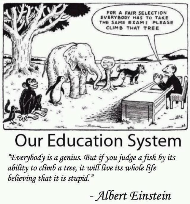 evaluation and fairness (?)