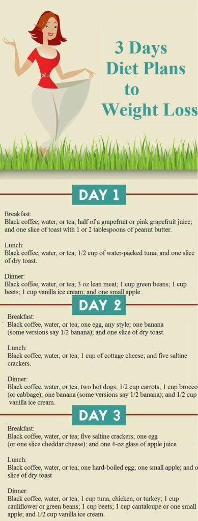 3day Diet Plan For Weight Loss Healthregular