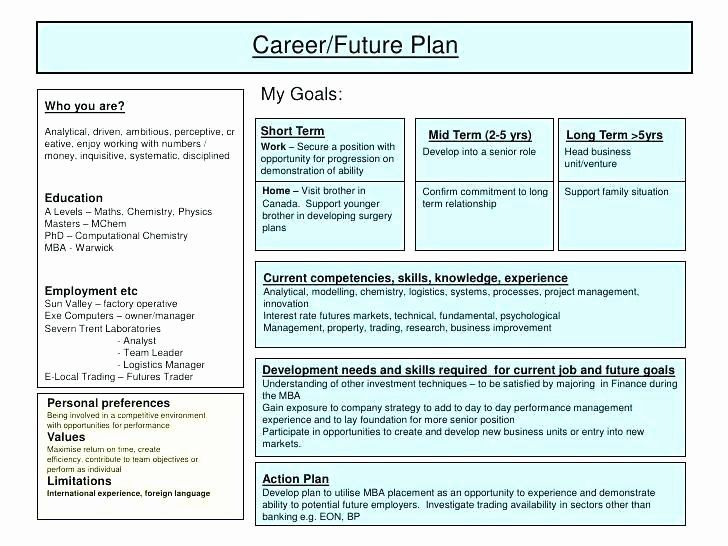 Individual Development Plan Examples Elegant Individual Development Plan Examples For Project Manag Career Development Plan Career Plan Example Career Planning