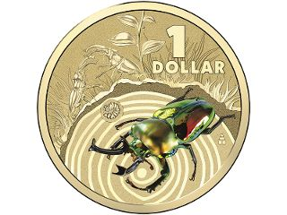 Stag Beetle - Colour printed frosted uncirculated coin. The male stag beetle's impressively-proportioned mandibles are used almost exclusively for battling rivals when preferred mating territories are at stake. Like the deer they are named for, these beetles engage in ferocious-looking contests by locking 'antlers'. #coincollecting