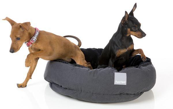 Cama para perros Luxemburgo. Disponible en canstory.com