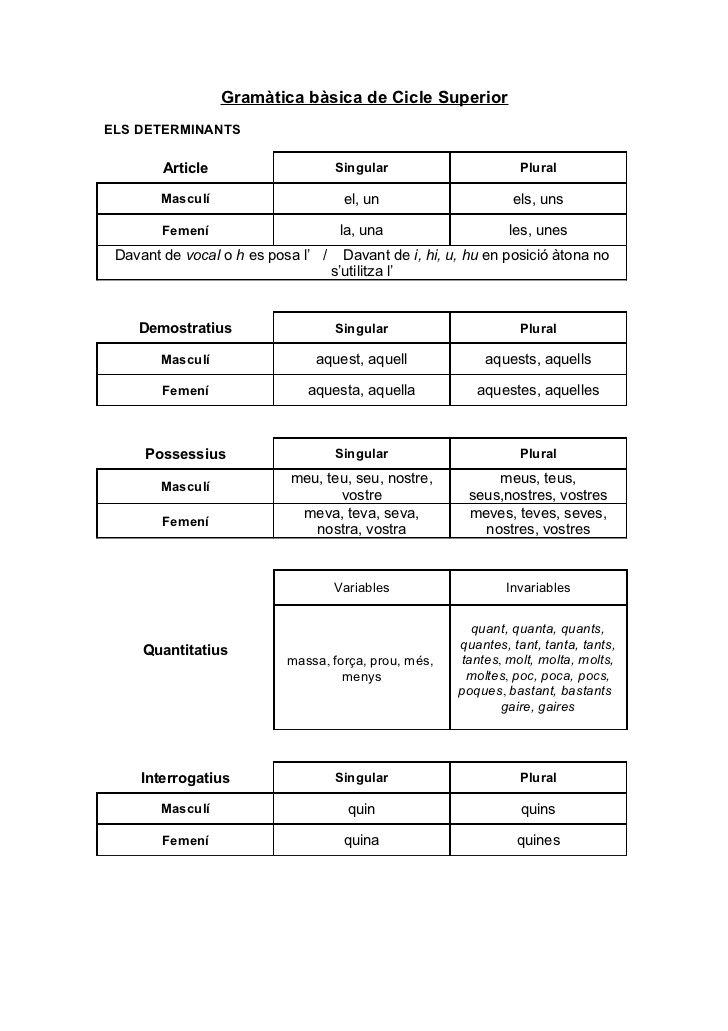 Gramàtica bàsica de cicle superior